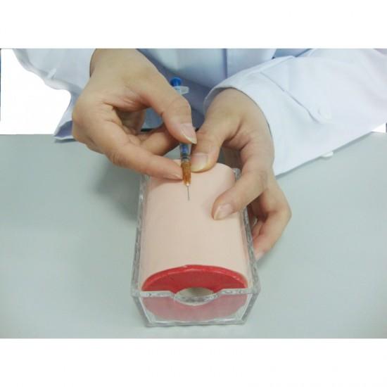 Мултифункционален тренировъчен модел за инжектиране, Модел 6018