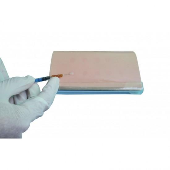 Тренировъчен модел за интрадермално инжектиране, Модел 6016