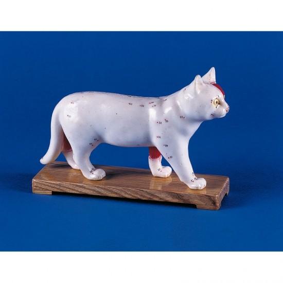 Макет на котка с акупунктурни точки